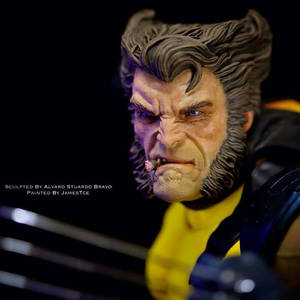 wolverine custom head