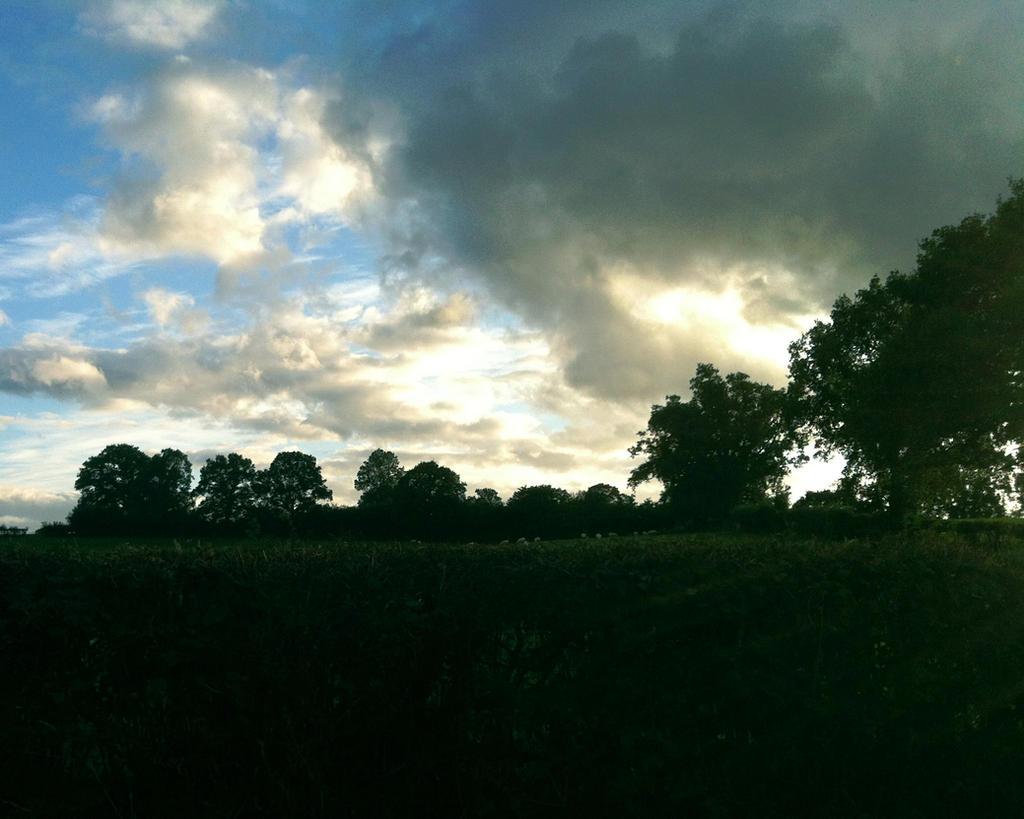Stormbrew by Iandbolt