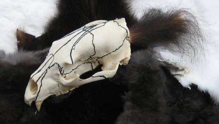 Black bear skull spirit rattle by lupagreenwolf