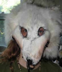 Shamanic wolf headdress 1 by lupagreenwolf