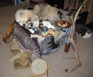 Grey wolf ritual altar 2 by lupagreenwolf