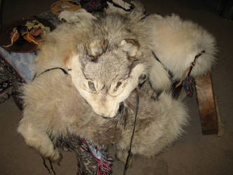 Grey wolf ritual altar 4 by lupagreenwolf