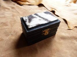Zebra box by lupagreenwolf