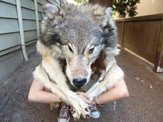 Custom wolf dance costume 1 by lupagreenwolf