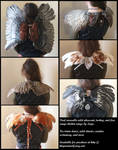 Real wearable wings! Yes!