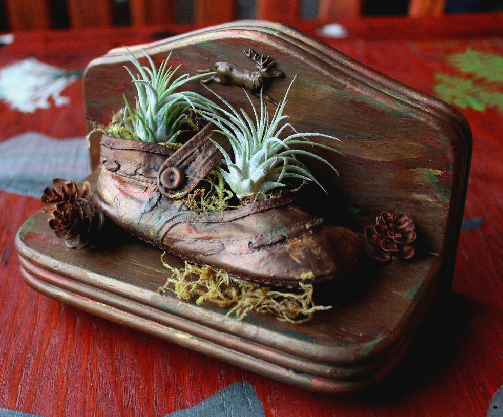 Baby shoe terrarium/planter by lupagreenwolf