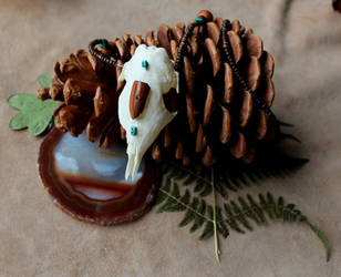 Armadillo Skull Necklace by lupagreenwolf