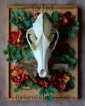 The Tarot of Bones: Fool by lupagreenwolf