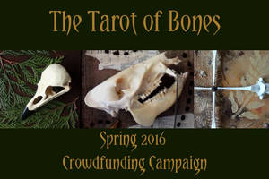 The Tarot of Bones IndieGoGo is live! by lupagreenwolf