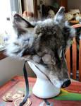 Wolf Mask #1