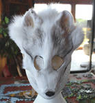 News Fox and Coyote Masks - 9-30-16