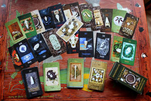 THE SAMPLE TAROT OF BONES DECK IS HERE! by lupagreenwolf