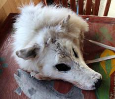 OOAK White Wolf Headdress Mask FS by lupagreenwolf
