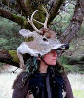Buck Deer Headdress by lupagreenwolf