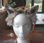 New Fox and Coyote Ears - 5-24-17