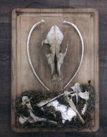 King of Bones by lupagreenwolf