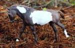 Woodland - Custom Breyer Cantering Welsh Pony