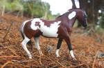Molly - Custom Breyer Paint Horse by lupagreenwolf