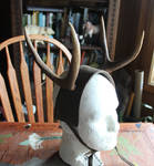 Antlers, Horns and More FS!
