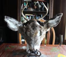Deer Antler, Ear, Mask Sets by lupagreenwolf