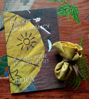 Pocket Osteomancy--Again! by lupagreenwolf