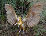 Lugh - Custom Breyer Fighting Stallion to Pegasus