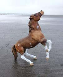 Renner - Custom Breyer Semi-rearing Mustang