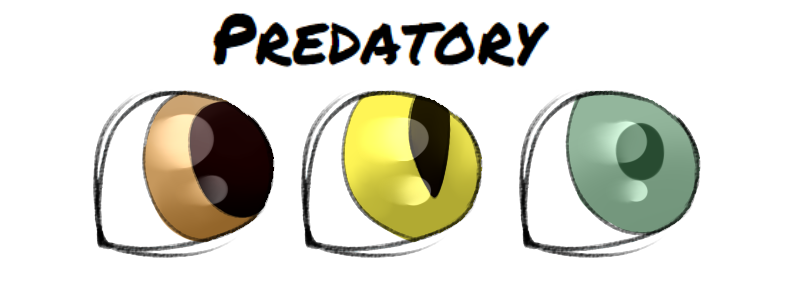 predatory_eyes_by_milkywhitebones-dbu8uj