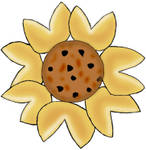 Cookie Blossom