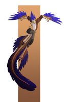 Karo Leaping by Dreamkeepers