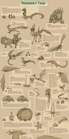 Dreamworld Fauna Infographic