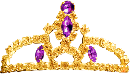 Princess Tiara - Amethyst