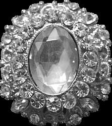 Silver Princess Pendant