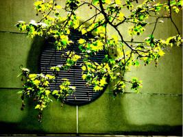 Green by Theuglyman