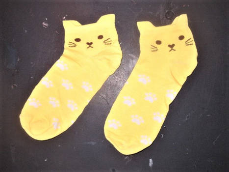 Cats For Your Paws