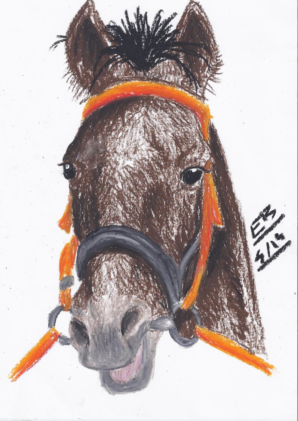 Cheval de course ! by Liliandril