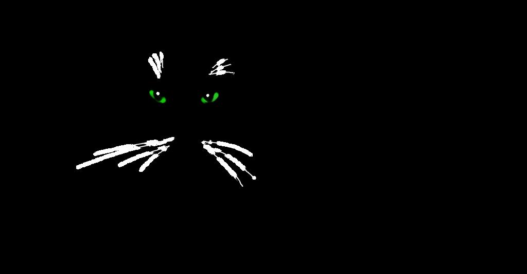 Kitty by Liliandril