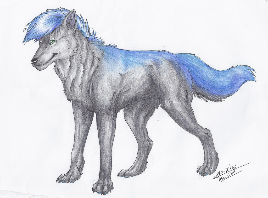 Jack the Wolf by Liliandril