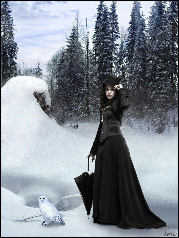 Winter Land by k0rvis