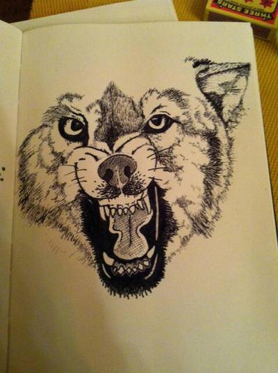 Wolf Snarl by zaftwiggy