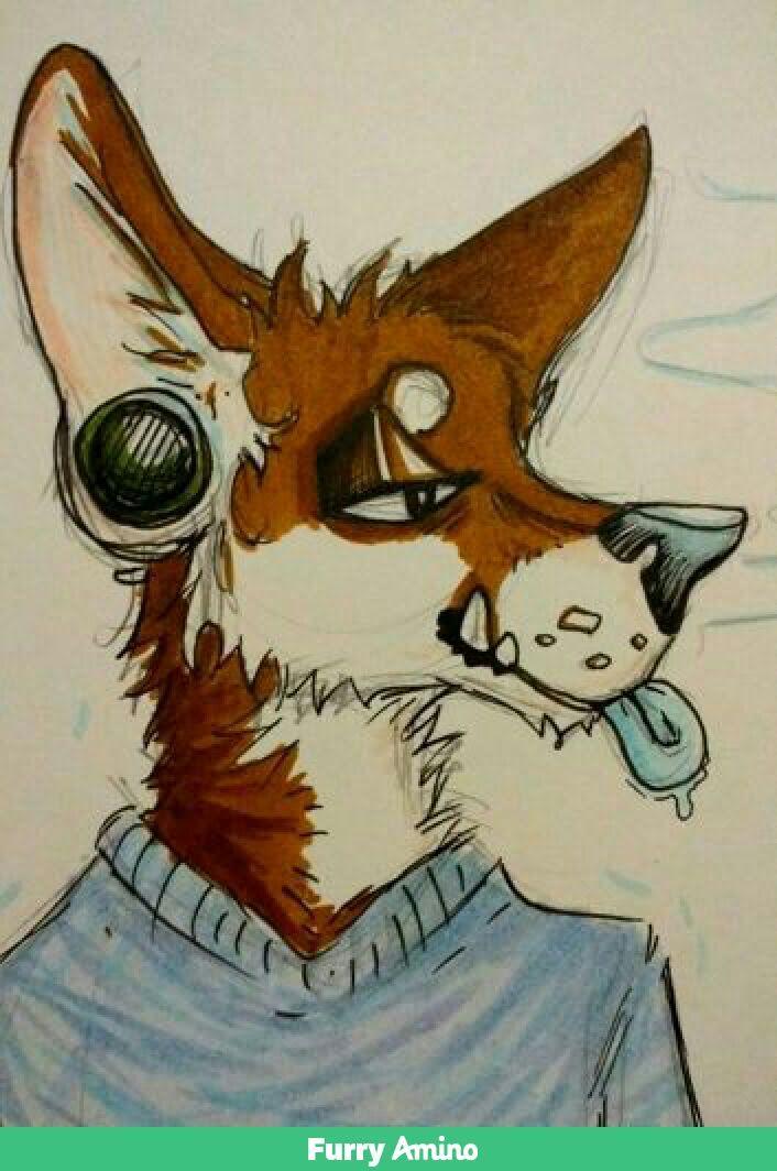 Coyoteheadshot by zaftwiggy