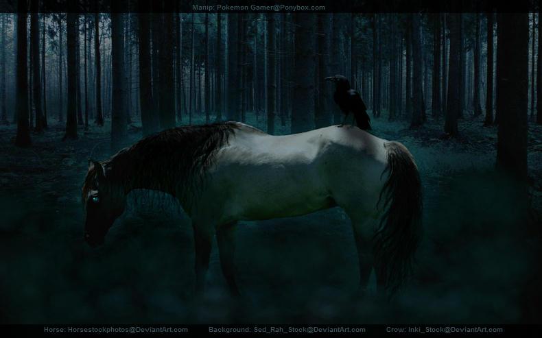 Badazz horse graphic.