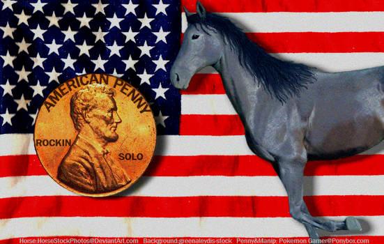Ponybox Horse Graphic.