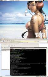 20060226_screenshot by stemer
