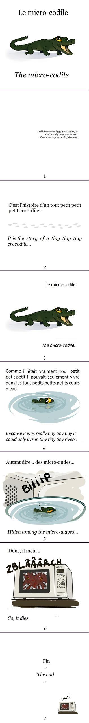 Le Microcodile by ellianounoursblanc