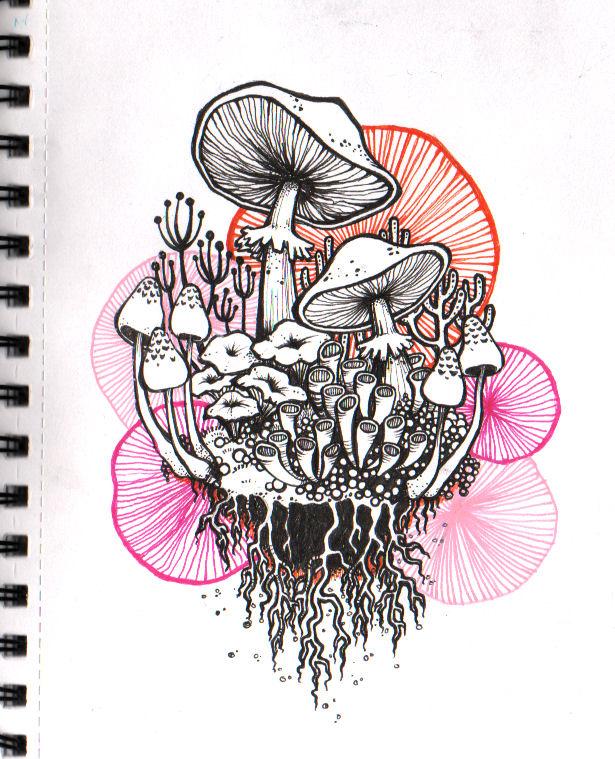 Shrooms by Lurppa