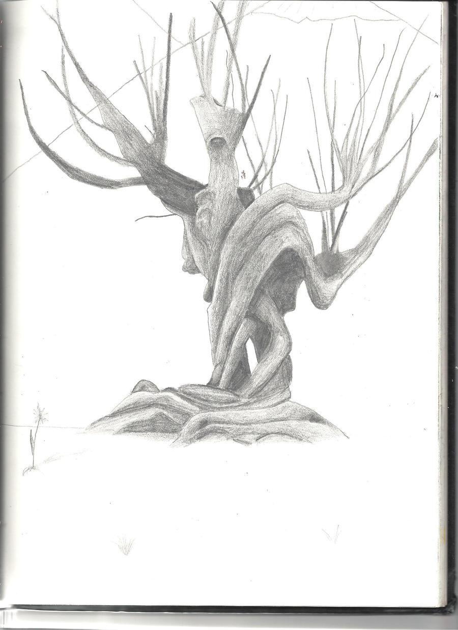 Whomping Willow By Muggleborneu On DeviantArt