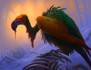 Rainbow Vulture