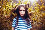 Into the Wild by wonderland1