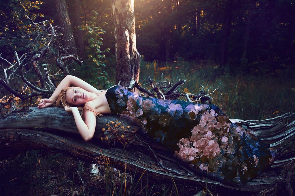 Forest constellation 2 by wonderland1